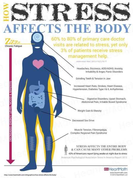 How Stress Impacts the Body