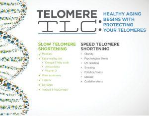 Telomere TLC